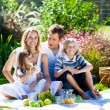 Happy family having a picnic — Stock Photo #10310725