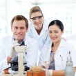 Students of science working in a laboratory - Stock Photo