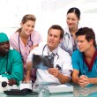 Stock Photo: Group of doctors examining an X-ray