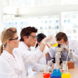 Stock Photo: Students learning science