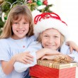 Adorable childrens celebrating christmas — Stock Photo #10317640