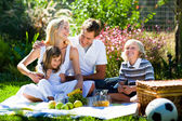 Happy family playing together in a picnic — Stock Photo