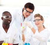 Retrato de un científicos examinar tubos de ensayo — Foto de Stock