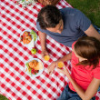 Elevated view of two friends lying on a blanket with a picnic — Stock Photo #10329111