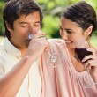 Stock Photo: Mdrinking wine while his friend looks at him