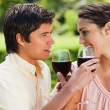 Stock Photo: Two friends linking their arms while holding glasses of wine