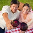 Two friends touching their glasses while raised during a picnic — Stock Photo