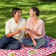 Two friends laughing while raising their glasses during a picnic — Stock Photo #10329841