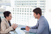 Business team negotiating — Stock Photo