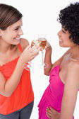 Two young women standing face to face while clinking their glass — Stock Photo