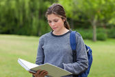 Young serious woman reading her notebook while standing in a par — Stock Photo