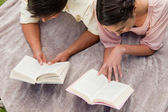 Elevated view of two friends reading while on a blanket — Stock Photo