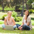 Smiling women sitting in the park with a laptop — Stock Photo #10331107
