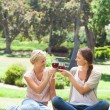 Friends clink glasses of wine in park — Stock Photo #10331122
