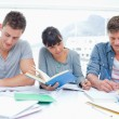 Three students study hard together — Stock Photo