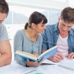 Skupina studentů pracovat společně na jejich domácích úkolů — Stock fotografie