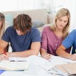 Four students studying hard - Foto Stock