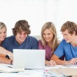A female student points to the screen as the group use the lapto — Stock Photo