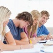 A group of students working as one student looks at the camera w — Stock Photo
