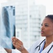 Female doctor looking at a set of X-rays — Stock Photo