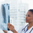 Female doctor looking at a set of X-rays — Stock Photo #10338154