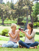 Friends clink glasses of wine in the park — Stock Photo