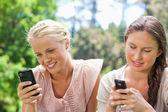 Amigos escribir mensajes de texto en el parque — Foto de Stock