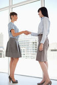 Both women smiling as they shake hands — Stock Photo