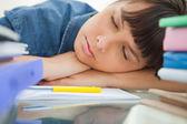 Female student sleeping among her books — Stock Photo