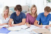 Four students sitting together and studying — Stockfoto