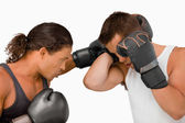 Side view of two male boxers — Stock Photo