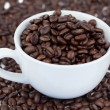Small angled white cup of coffee with coffee beans — Stock Photo #10579806
