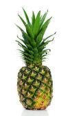 Angled pineapple upright — Stock Photo