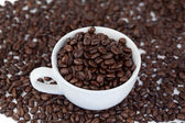 Small white cup of coffee with coffee beans — Stock Photo