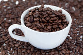 Small angled white cup of coffee with coffee beans — Stock Photo