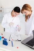 Zwei wissenschaftler beobachten ein reagenzglas — Stockfoto
