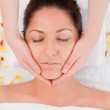 Dark-haired woman beauty having a facial massage — Stock Photo #10599198