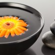 Orange flower floating on a black bowl and a stack of black pebb — Stock Photo #10599423