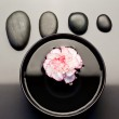 Pink and white carnation floating in a black bowl with aligned b — Stock Photo #10599473