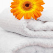 An orange sunflovers on white towels — Stock Photo