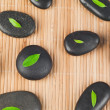Leaves on black stones — Stock Photo