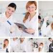 Collage of two female scientists doing experiments — Stock Photo #10599933