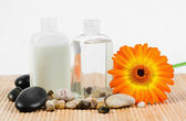 Sunflower with round smooth pebbles and glass bottles — Stock Photo
