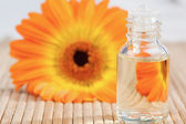 Close up on a glass phial and a sunflower — Stock Photo