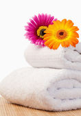 Fuchsia and orange sunflovers on white towels — Stock Photo
