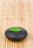 A leaf on a round smooth pebble — Stock Photo