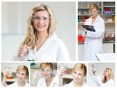 Collage of a female scientist doing experiments — Stock Photo