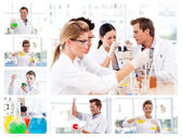 Collage of several scientists doing experiments — Stock Photo