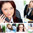 Collage of several business women — Stock Photo