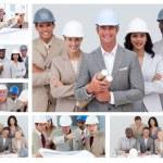 Коллаж дружественных строительства — Стоковое фото